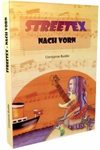 3d streetex2 300