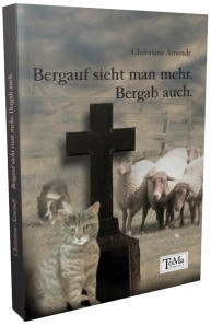 Bergauf cover 3d